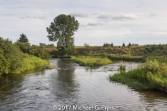 Clam Creek