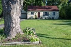 michael_prais_Houses_-_Tree_and_Blockhouse